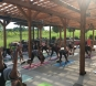 August 21: Yoga at the Vineyard